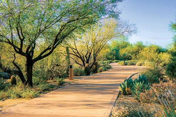 Irrigation renovation project (Photo: DC Ranch Association)