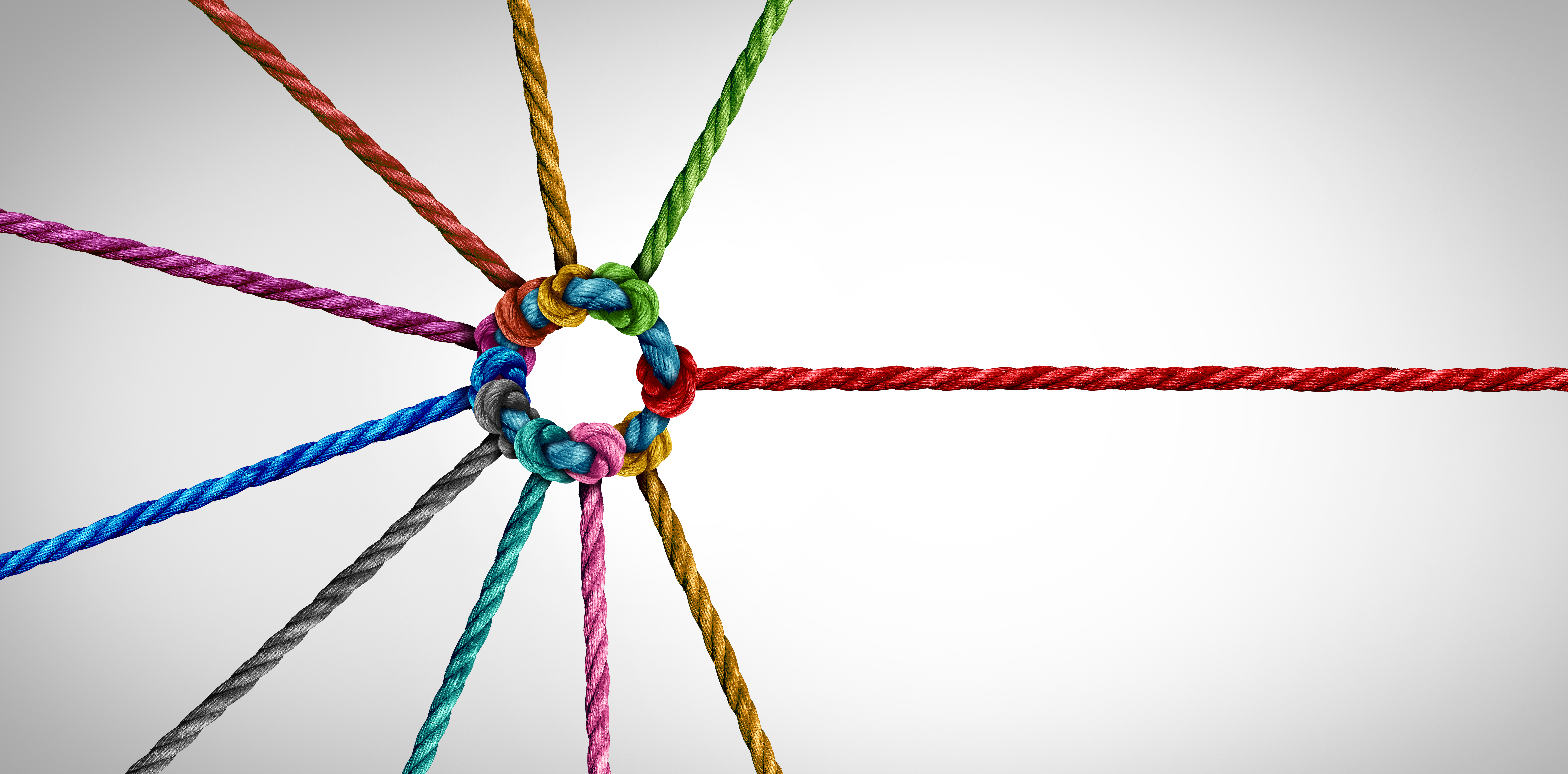 Ropes signifying team building (Photo: wildpixel / iStock / Getty Images Plus)