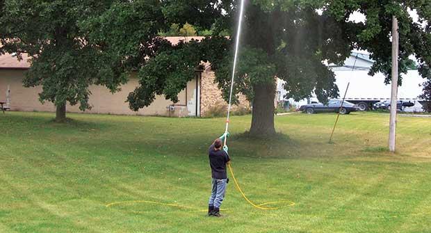 Man spraying tree (Photo: Gregson-Clark Spraying Equipment)