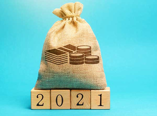 Pouch for 2021 budget (Photo: Andrii Yalanskyi / iStock / Getty Images Plus)