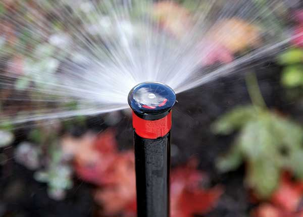 Irrigation sprayhead (Photo: LM Staff)