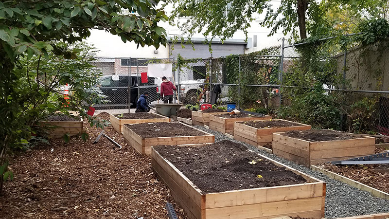 New planting beds being constructed at Jackie Robinson Community Garden in New York City. (Photo: Project EverGreen)