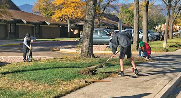 Irrigation renovation (Photo: Weisburg Landscape Maintenance)