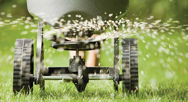 Spreading fertilizer (Photo: BanksPhotos/iStock / Getty Images Plus/Getty Images)
