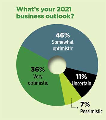 Business outlook graph (Graphic: LM Staff)