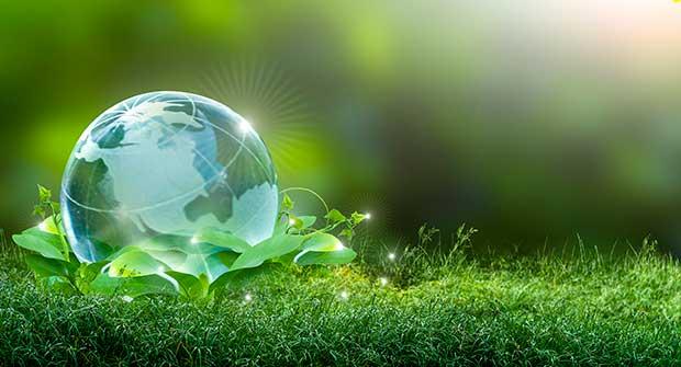 Sustainability image (Photo: Surasak Suwanmake / iStock / Getty Images / Getty Images Plus)
