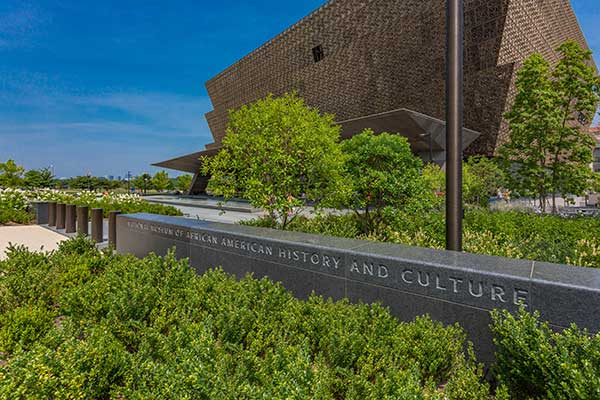Irrigation project at NMAAHC (Photo: Ruppert Landscape)