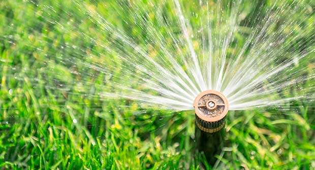 Sprinkler head (Photo: MariuszBlach / iStock / Getty Images / Getty Images Plus)
