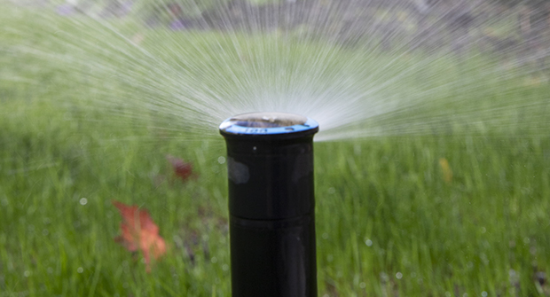 Several irrigation installers recommend Rain Bird heads (Photo: LM Staff)