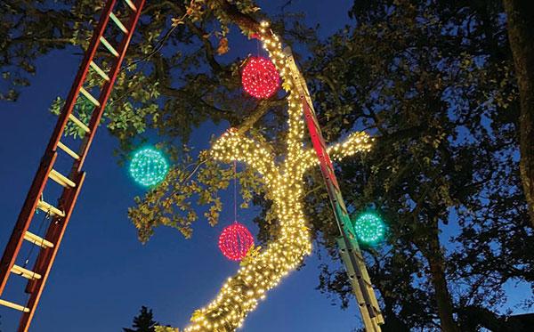 Holiday lighting (Photo: Murphy Christmas Lighting)