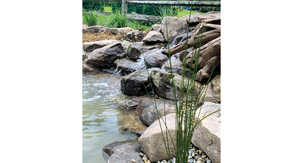 Ponds by George uses rock or driftwood on ponds to enhance the natural effects. (Photo: Ponds by George)