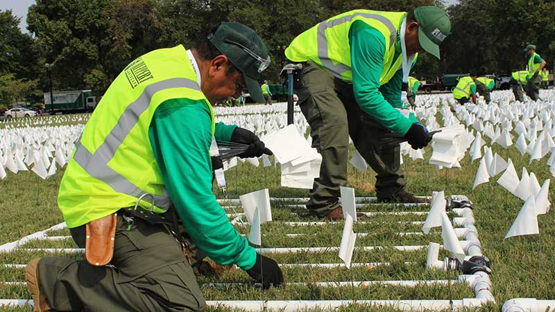 Teams of two work to fill each grid section with white flags. (Photo: Ruppert Landscape)