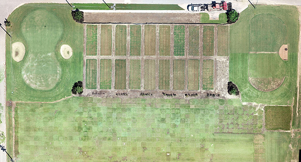 Drone footage shows turf research at the University of Georgia Tifton (Source: University of Georgia)